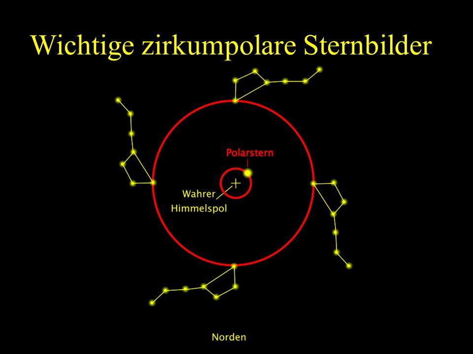 Wichtige zirkumpolare Sternbilder