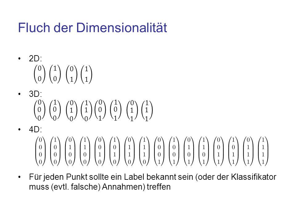 Fluch der Dimensionalität