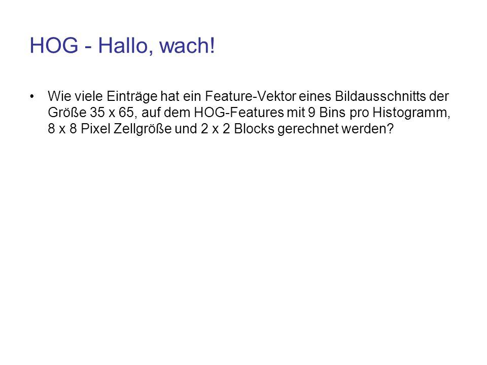 HOG - Hallo, wach!