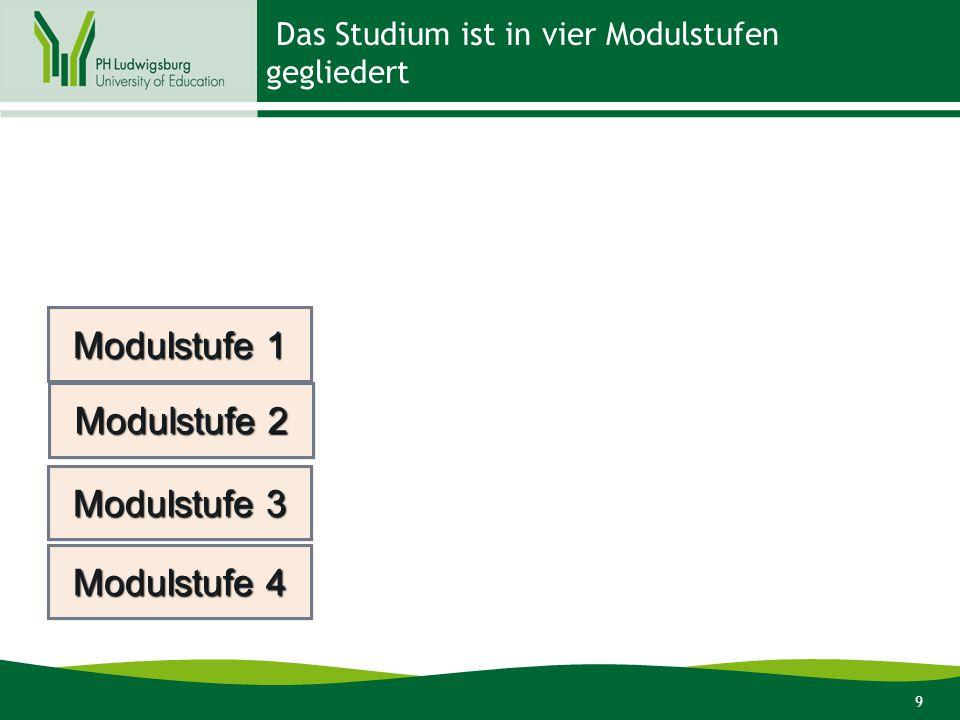 Das Studium ist in vier Modulstufen gegliedert