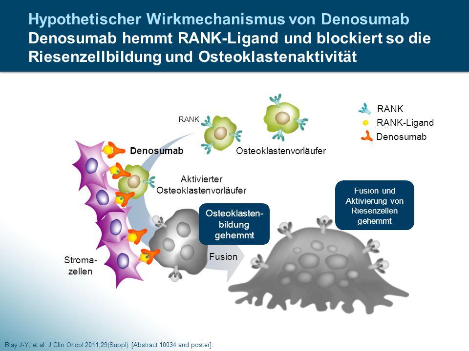 Hypothetischer Wirkmechanismus von Denosumab Denosumab hemmt RANK-Ligand und blockiert so die Riesenzellbildung und Osteoklastenaktivität