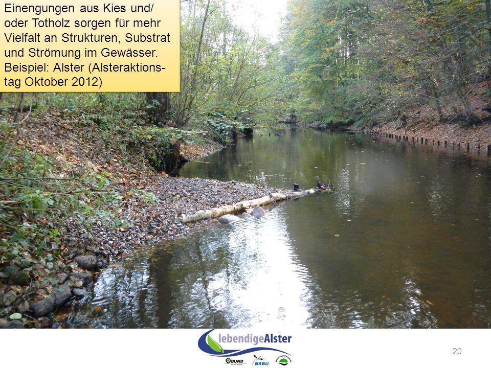 Einengungen aus Kies und/ oder Totholz sorgen für mehr Vielfalt an Strukturen, Substrat und Strömung im Gewässer. Beispiel: Alster (Alsteraktions-tag Oktober 2012)