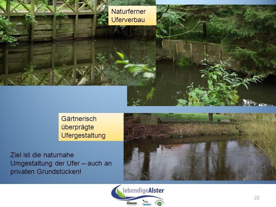 Naturferner Uferverbau