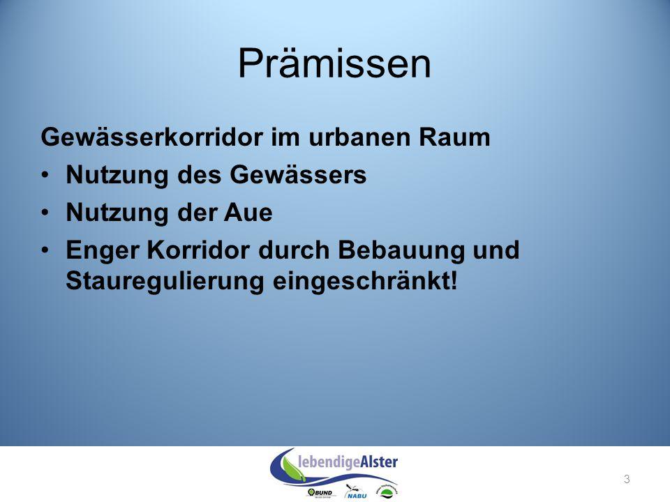 Prämissen Gewässerkorridor im urbanen Raum Nutzung des Gewässers