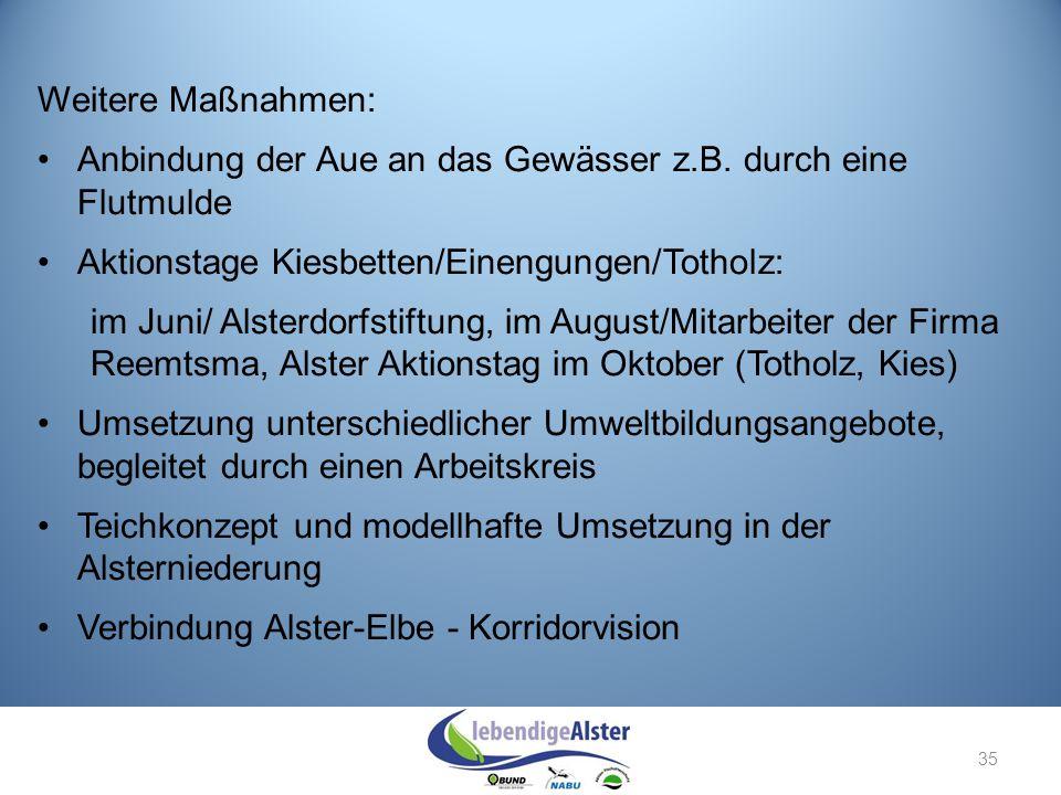 Weitere Maßnahmen: Anbindung der Aue an das Gewässer z.B. durch eine Flutmulde. Aktionstage Kiesbetten/Einengungen/Totholz: