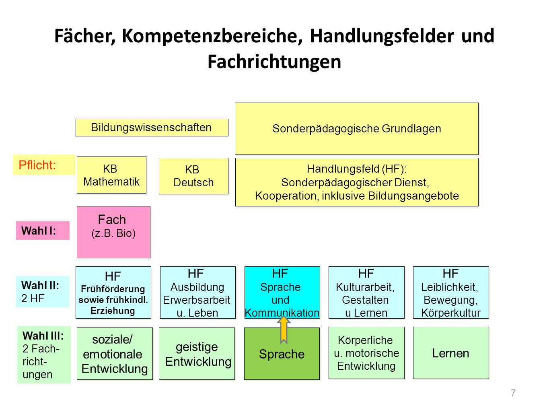 Fächer, Kompetenzbereiche, Handlungsfelder und Fachrichtungen