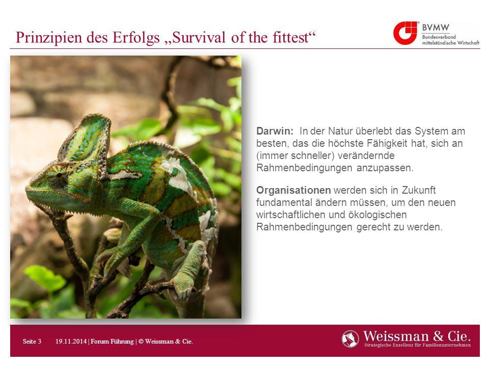 """Prinzipien des Erfolgs """"Survival of the fittest"""