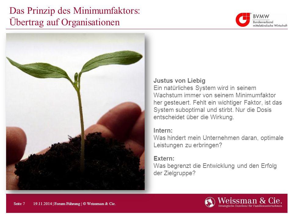 Das Prinzip des Minimumfaktors: Übertrag auf Organisationen