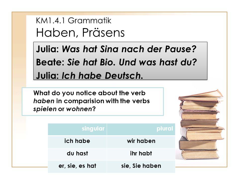 KM1.4.1 Grammatik Haben, Präsens