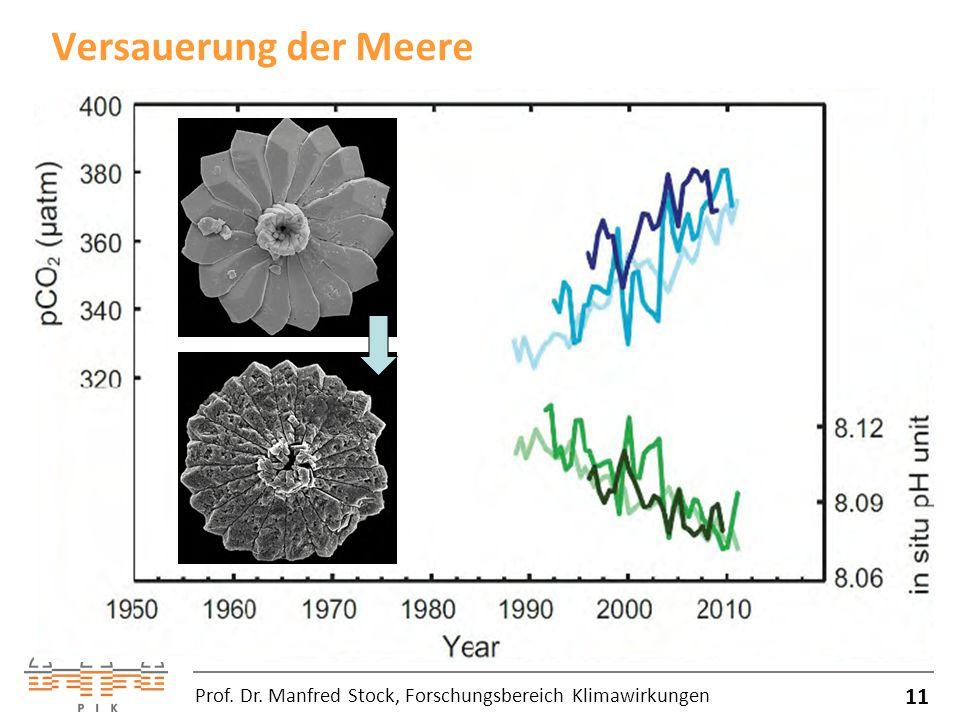 Versauerung der Meere Prof. Dr. Manfred Stock, Forschungsbereich Klimawirkungen