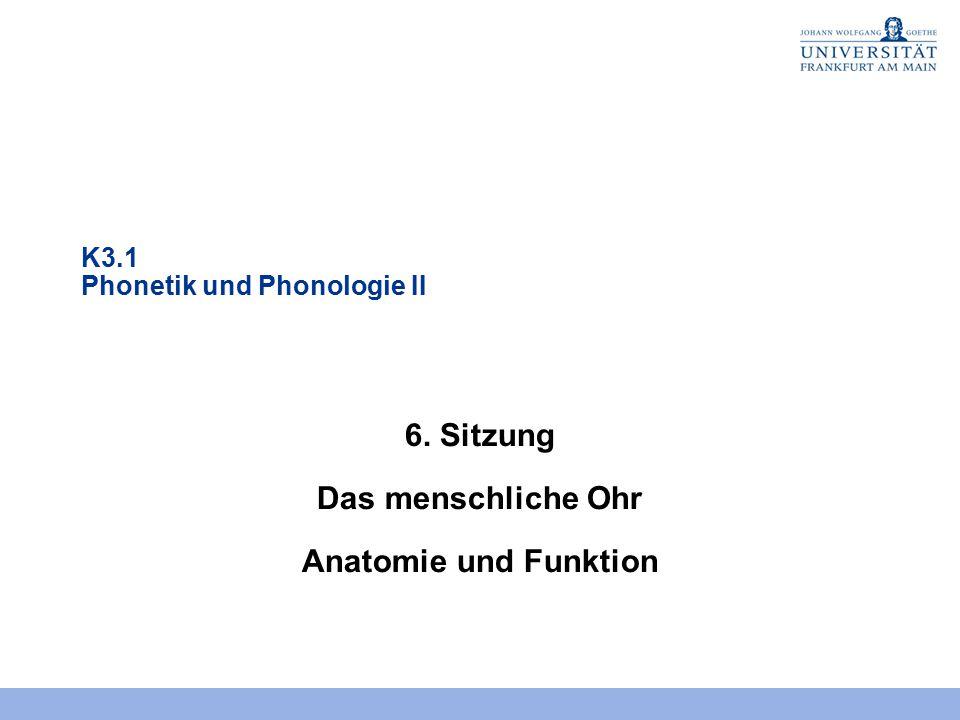 6. Sitzung Das menschliche Ohr Anatomie und Funktion
