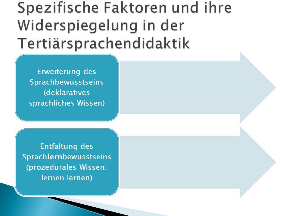 Erweiterung des Sprachbewusstseins (deklaratives sprachliches Wissen)