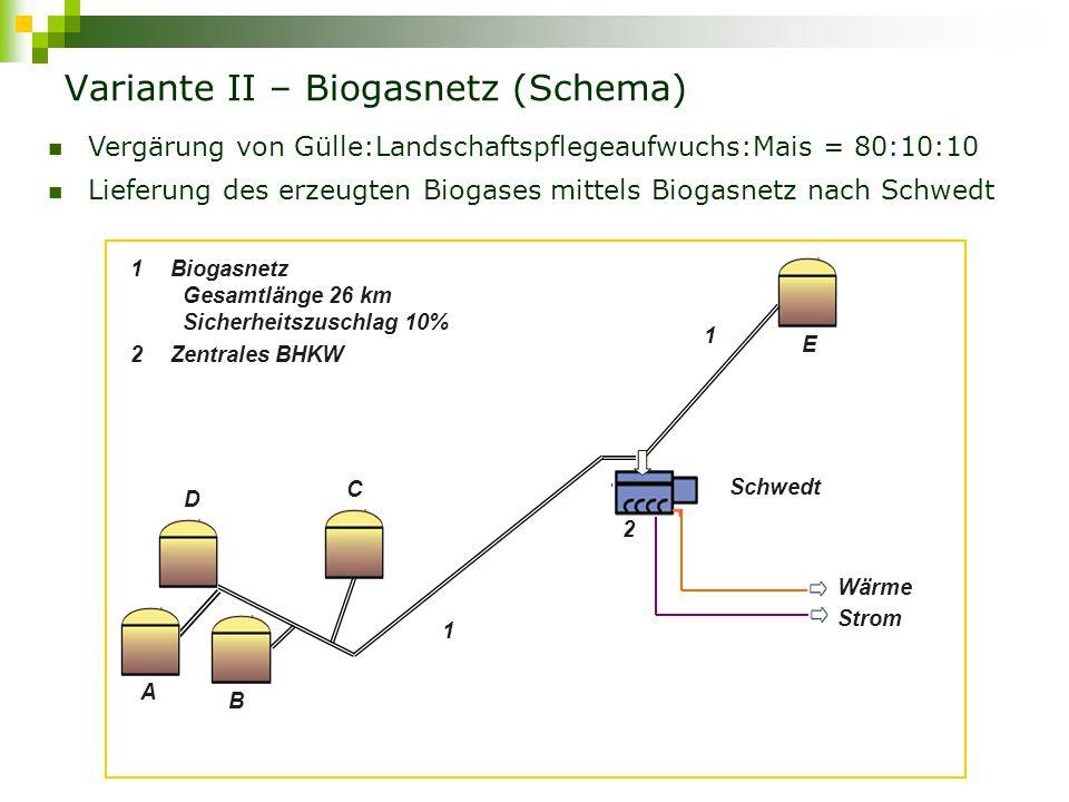 Variante II – Biogasnetz (Schema)