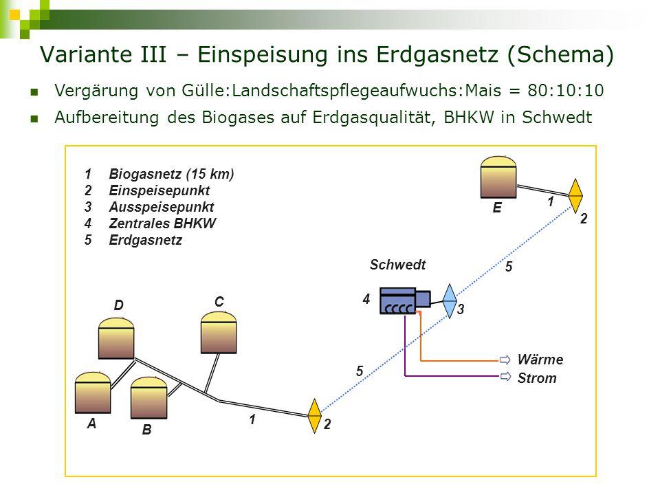 Variante III – Einspeisung ins Erdgasnetz (Schema)
