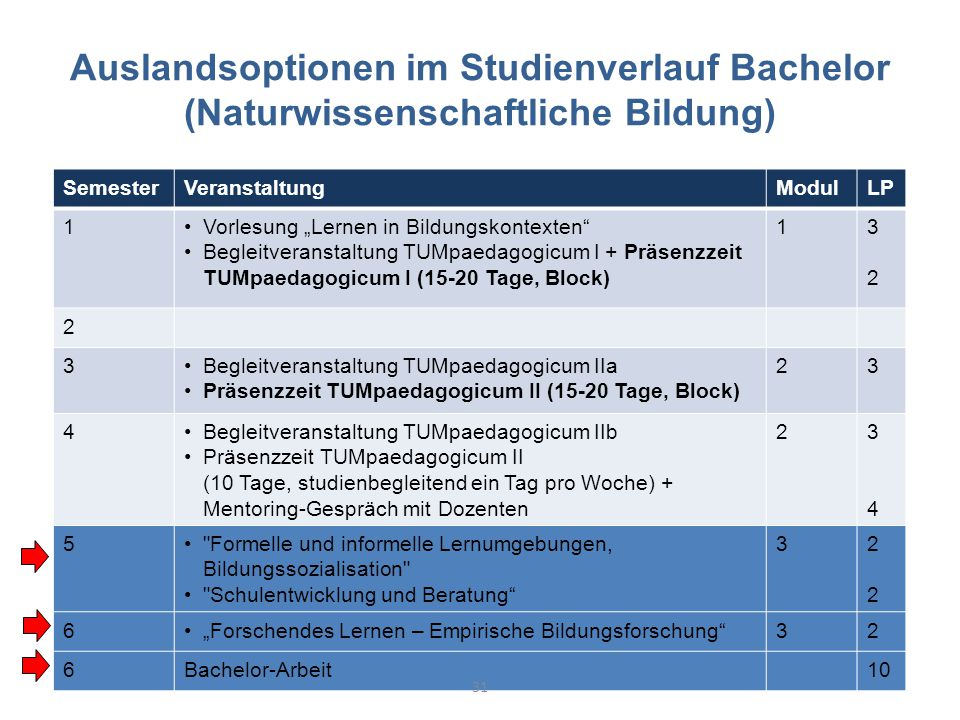 Auslandsoptionen im Studienverlauf Bachelor (Naturwissenschaftliche Bildung)