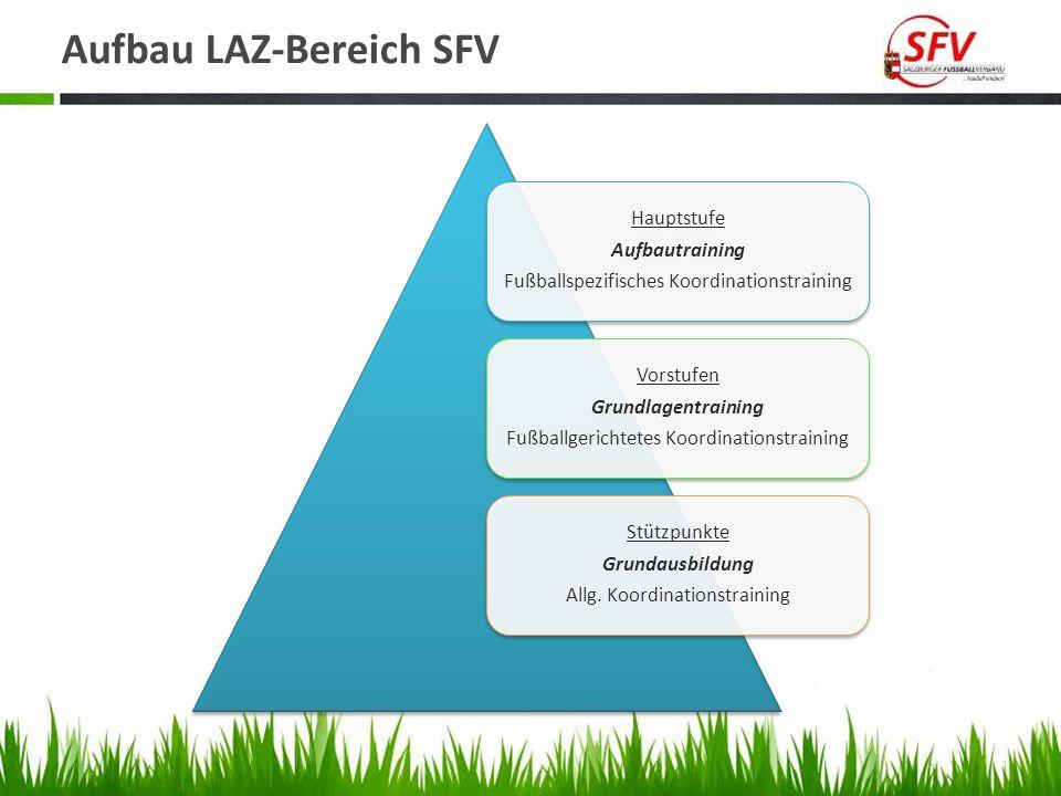 Aufbau LAZ-Bereich SFV