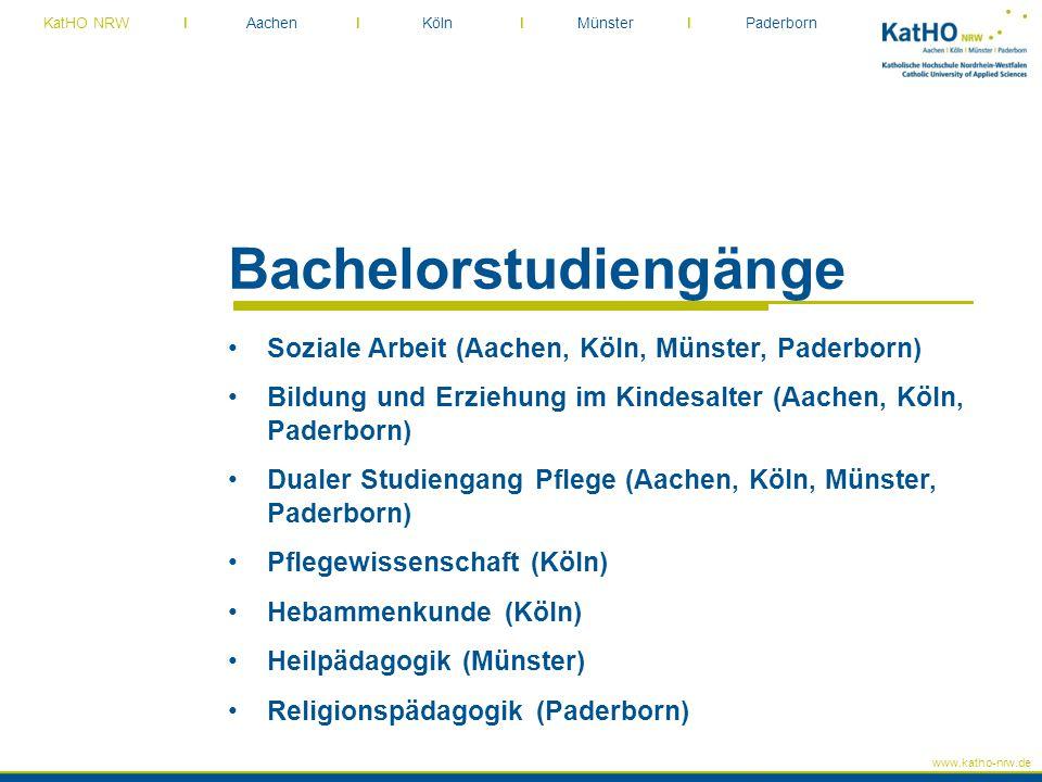 Bachelorstudiengänge