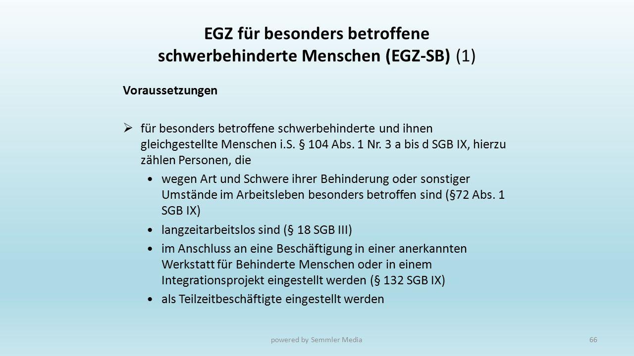 EGZ für besonders betroffene schwerbehinderte Menschen (EGZ-SB) (1)