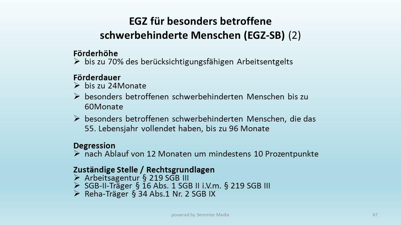 EGZ für besonders betroffene schwerbehinderte Menschen (EGZ-SB) (2)