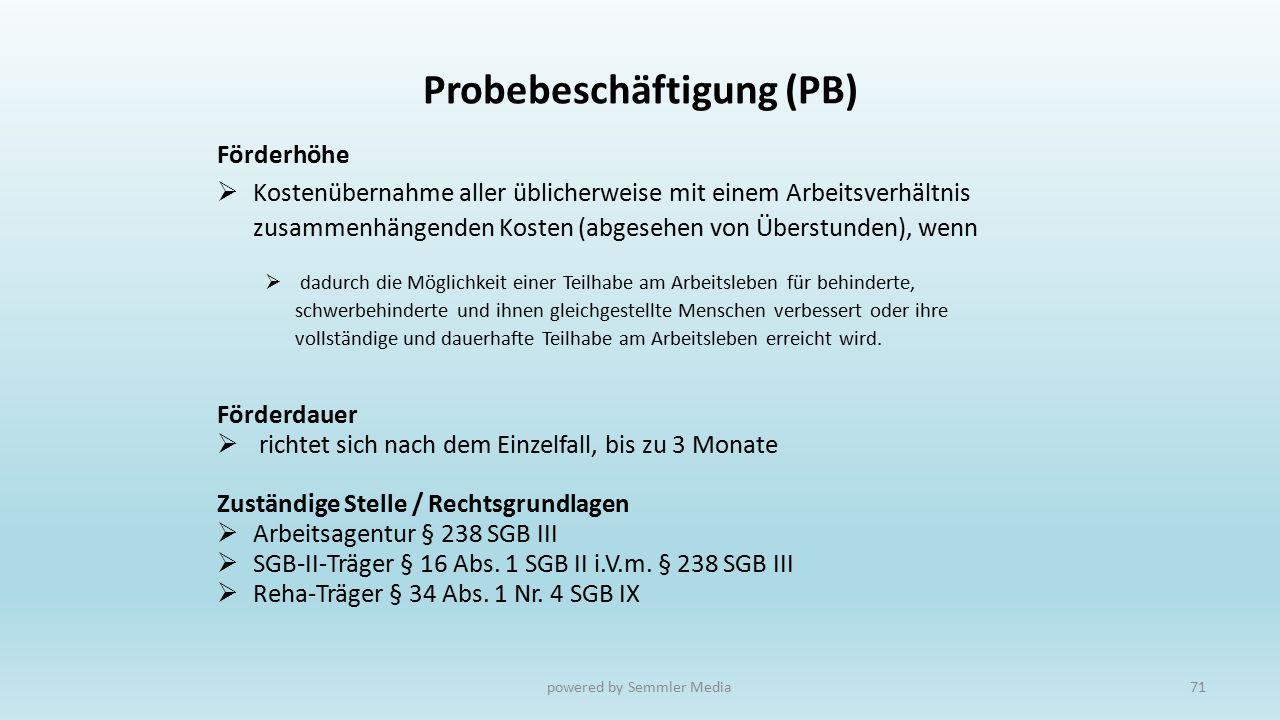 Probebeschäftigung (PB)