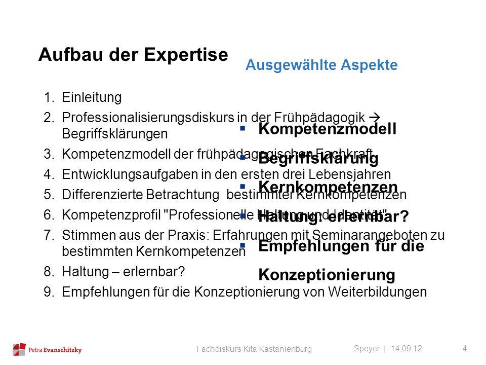 Aufbau der Expertise Kompetenzmodell Begriffsklärung Kernkompetenzen