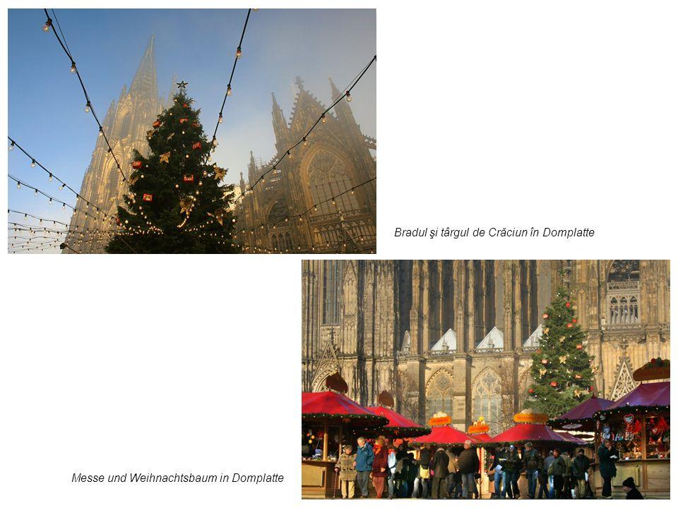 Bradul şi târgul de Crăciun în Domplatte