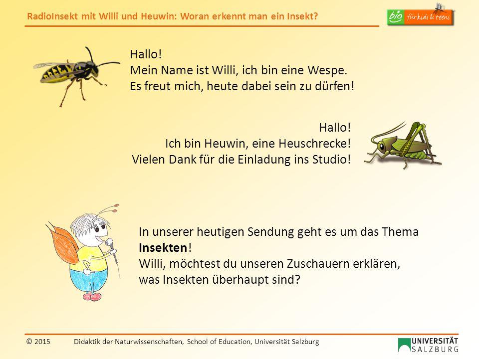 Hallo! Mein Name ist Willi, ich bin eine Wespe. Es freut mich, heute dabei sein zu dürfen! Hallo!