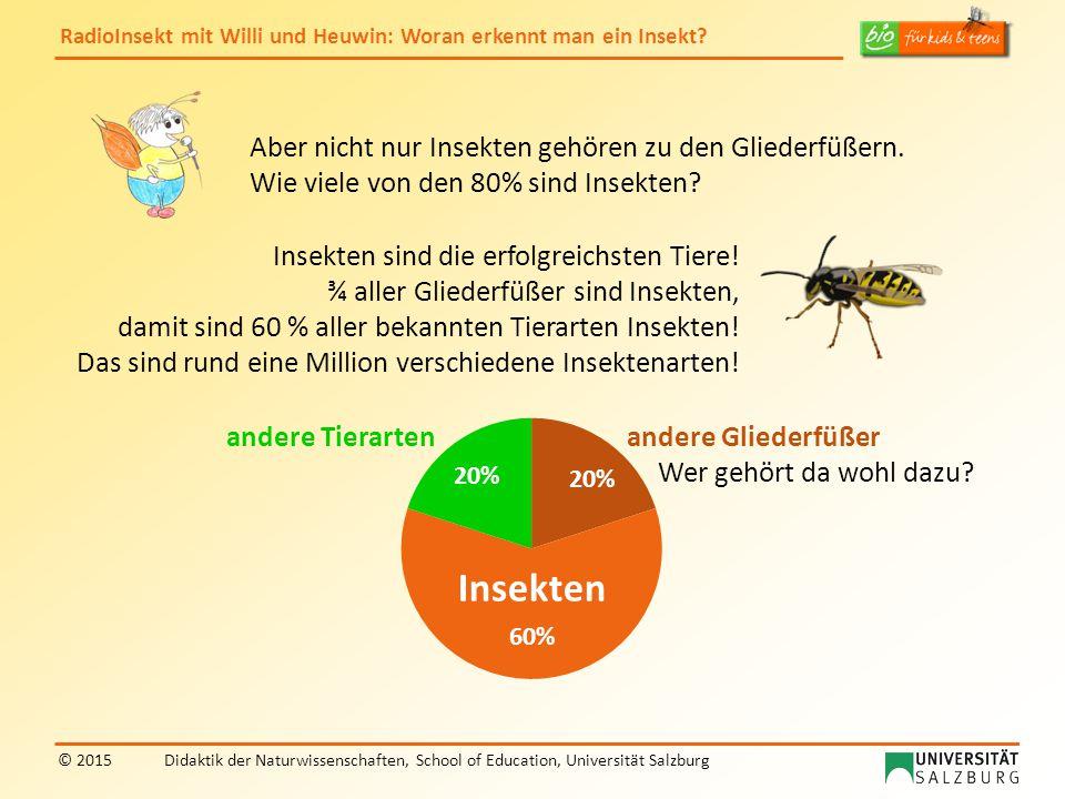 Aber nicht nur Insekten gehören zu den Gliederfüßern.