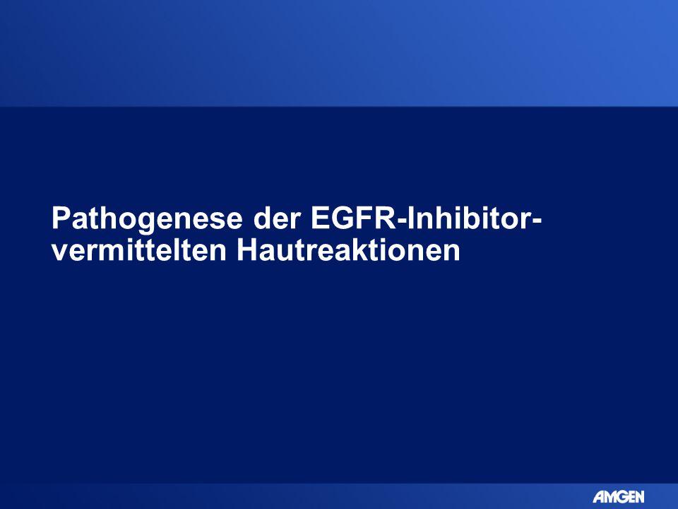 Pathogenese der EGFR-Inhibitor-vermittelten Hautreaktionen