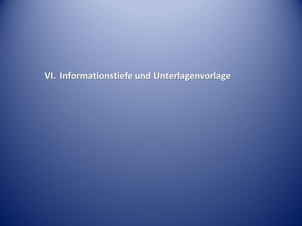 VI. Informationstiefe und Unterlagenvorlage