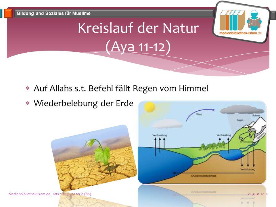 Kreislauf der Natur (Aya 11-12)