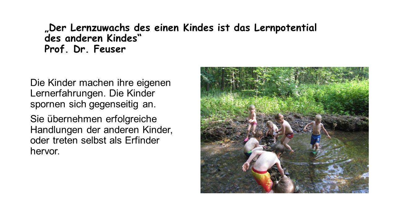"""""""Der Lernzuwachs des einen Kindes ist das Lernpotential des anderen Kindes Prof. Dr. Feuser"""
