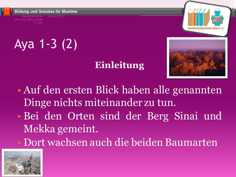 Medienbibliothek-islam.de_Tafsir_sure at-Tin (95)