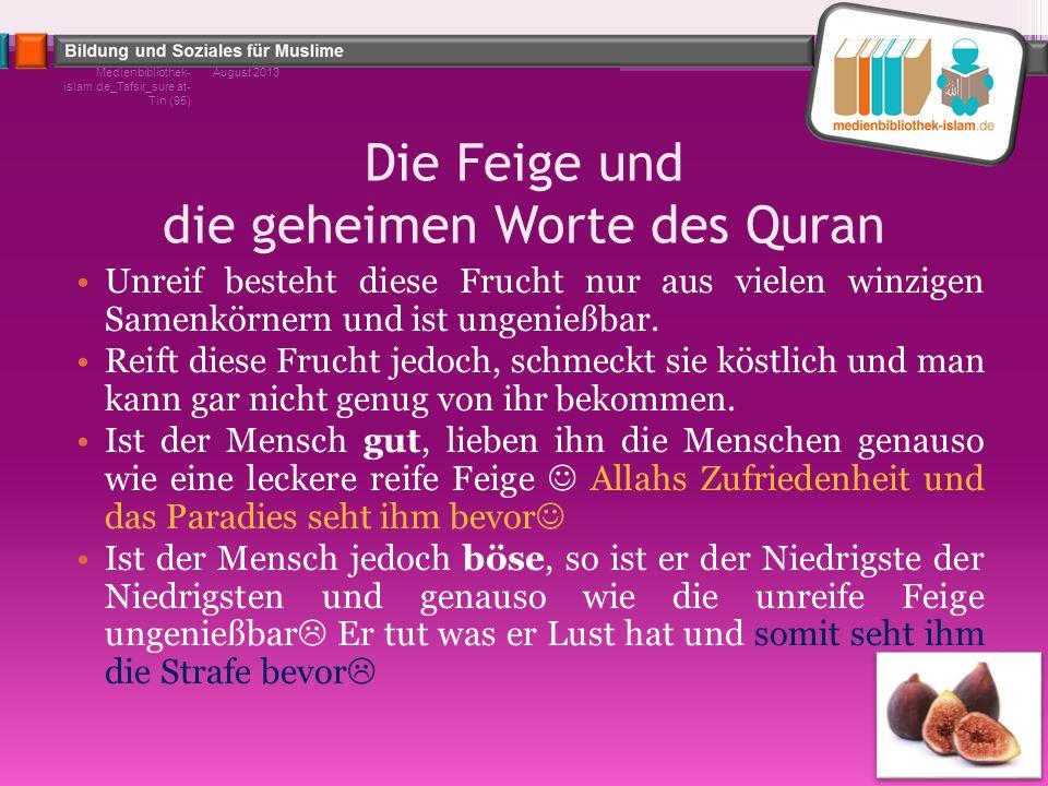 Die Feige und die geheimen Worte des Quran