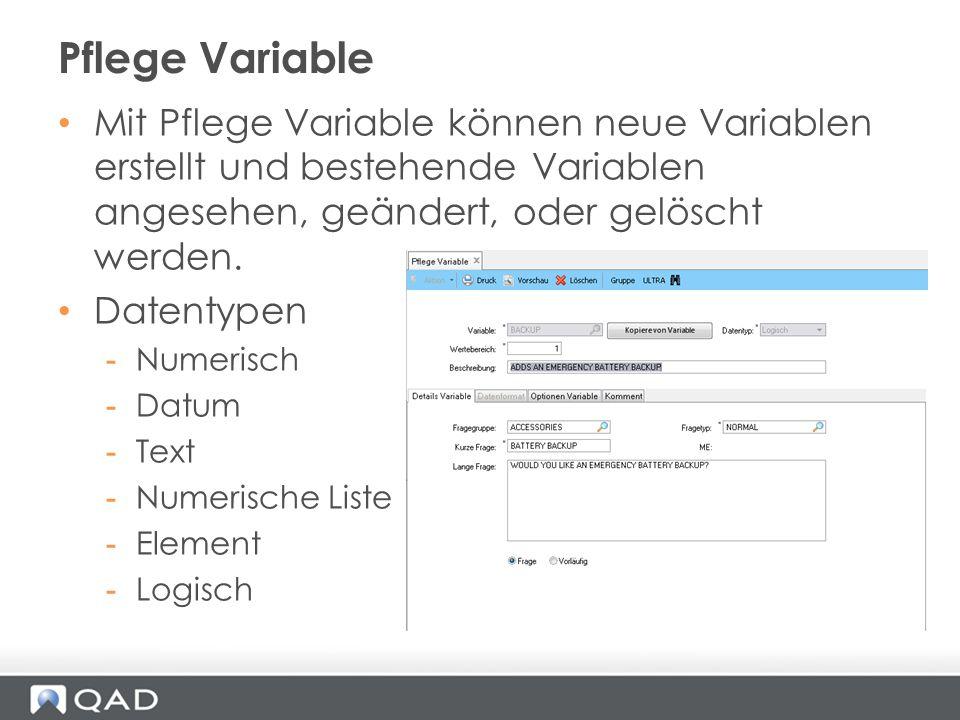 Pflege Variable Mit Pflege Variable können neue Variablen erstellt und bestehende Variablen angesehen, geändert, oder gelöscht werden.