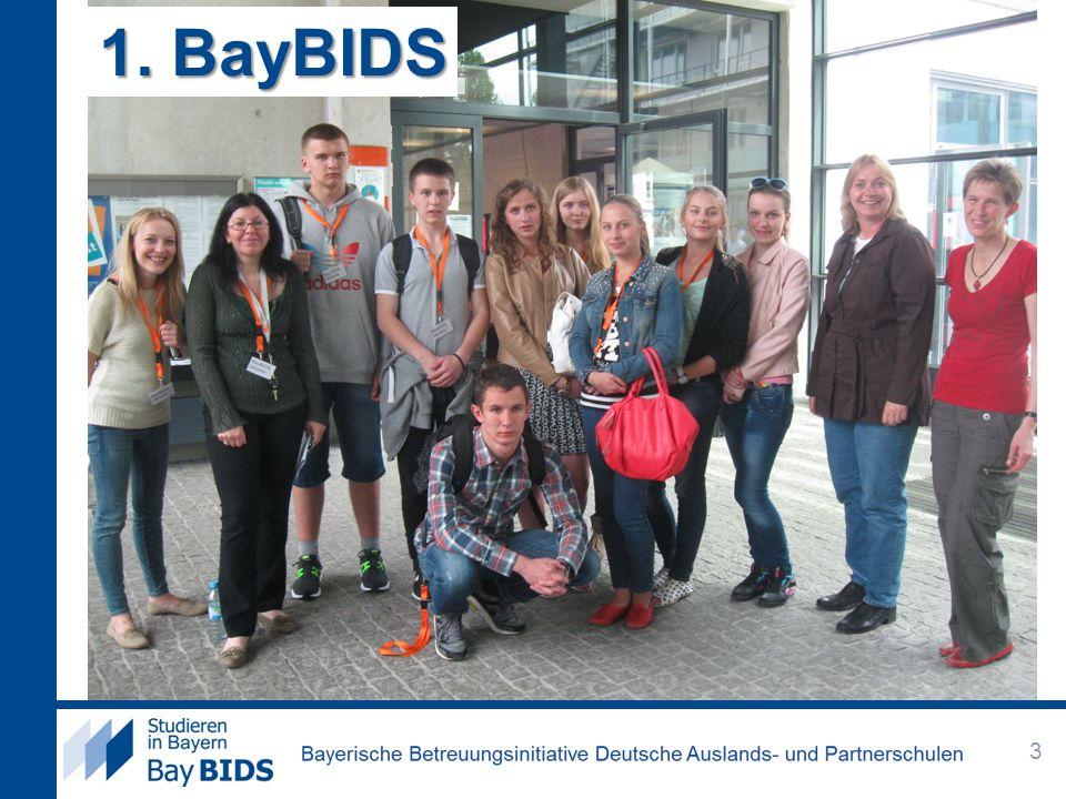 1. BayBIDS