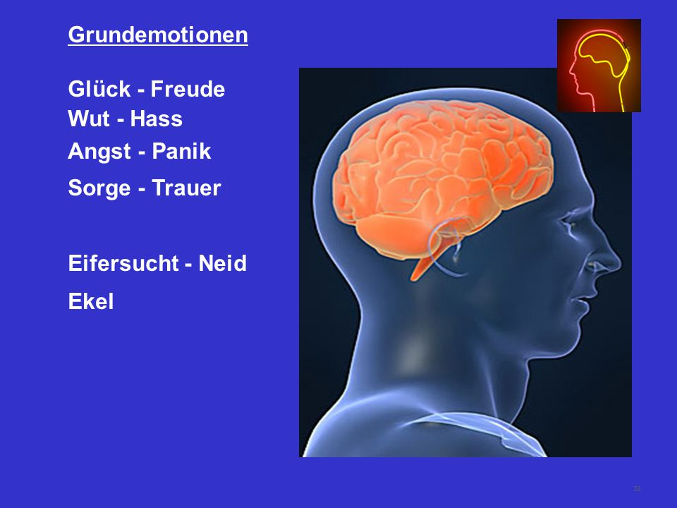 Grundemotionen Glück - Freude Wut - Hass Angst - Panik Sorge - Trauer Eifersucht - Neid Ekel