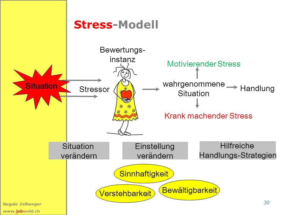 Stress-Modell Bewertungs- instanz Motivierender Stress Situation