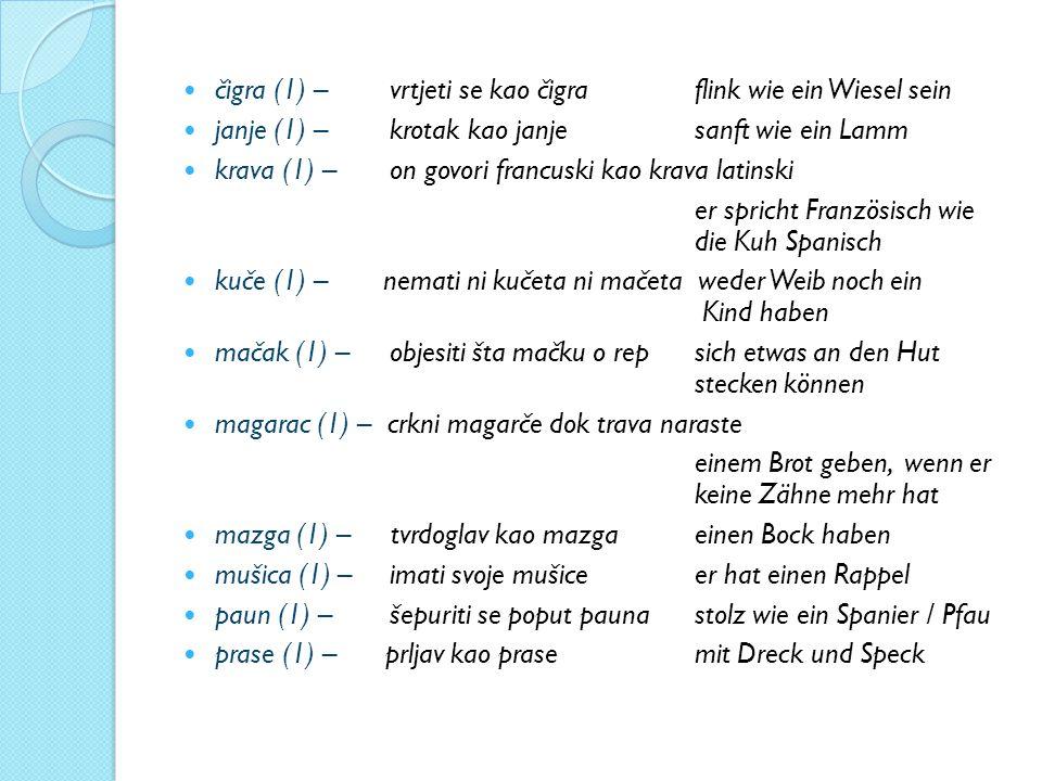 čigra (1) – vrtjeti se kao čigra flink wie ein Wiesel sein