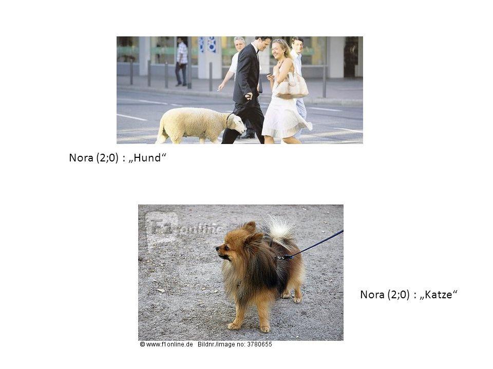 "Nora (2;0) : ""Hund Nora (2;0) : ""Katze"