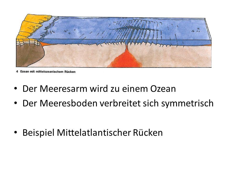 Der Meeresarm wird zu einem Ozean