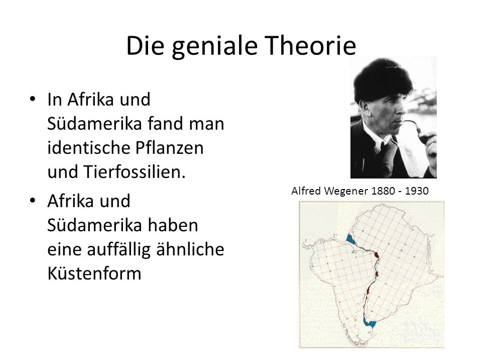 Die geniale Theorie In Afrika und Südamerika fand man identische Pflanzen und Tierfossilien.
