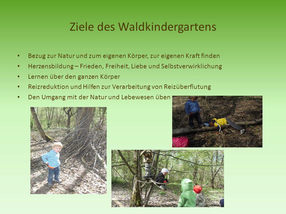 Ziele des Waldkindergartens