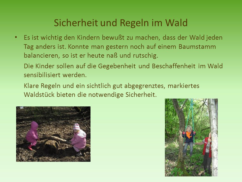 Sicherheit und Regeln im Wald
