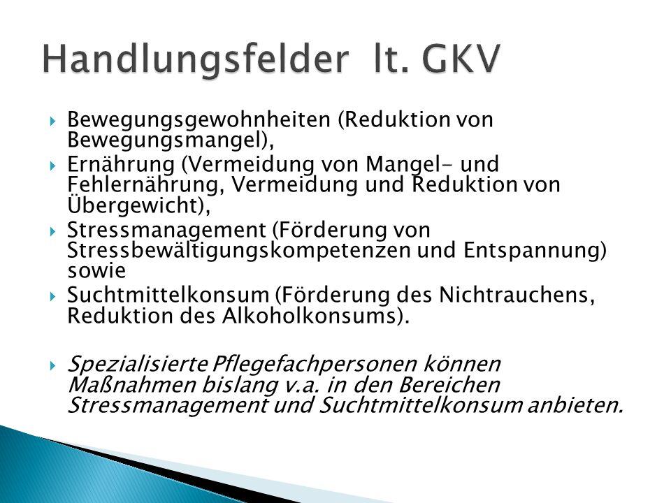 Handlungsfelder lt. GKV
