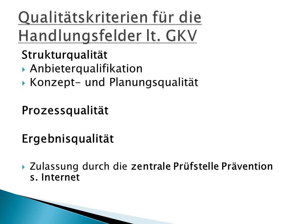 Qualitätskriterien für die Handlungsfelder lt. GKV