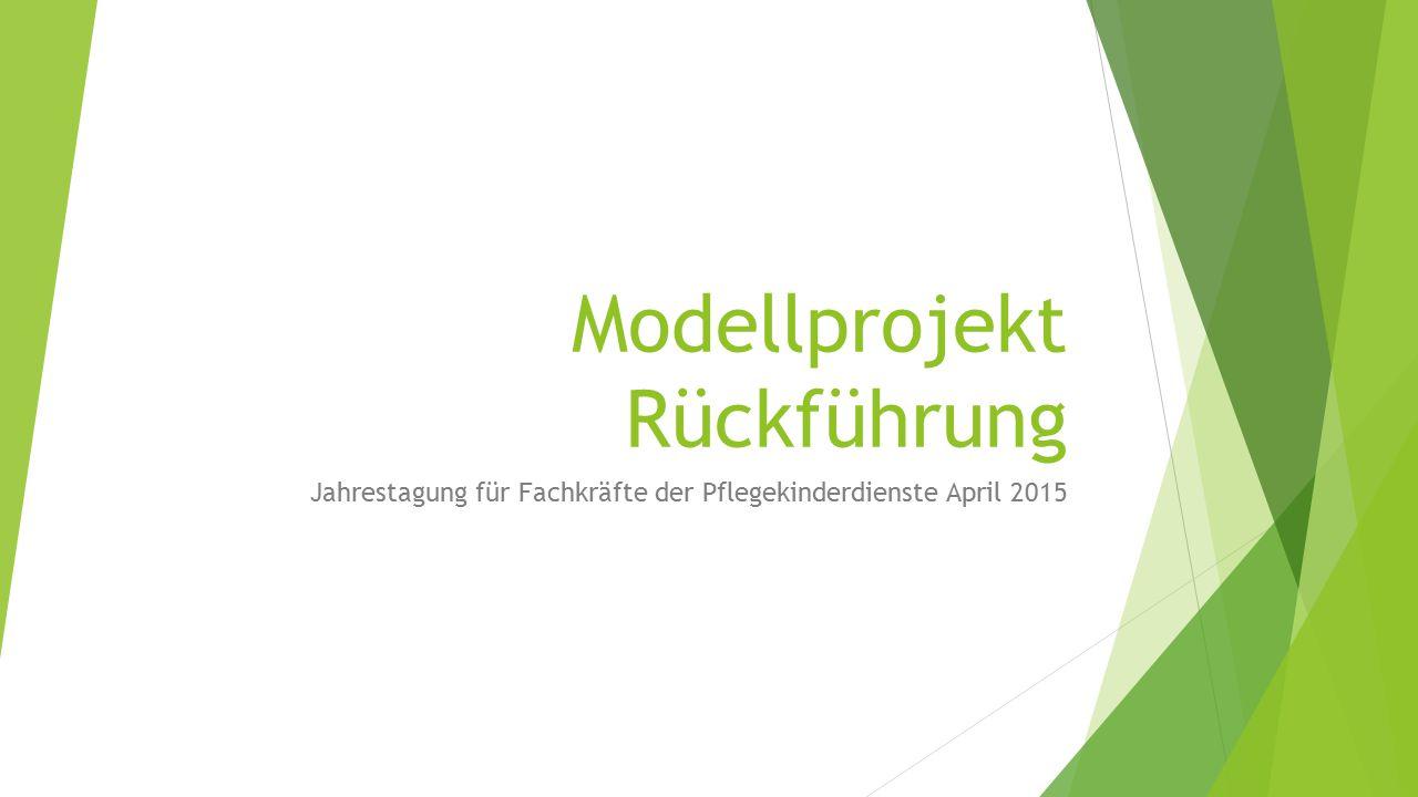 Modellprojekt Rückführung
