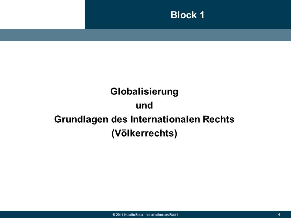 Grundlagen des Internationalen Rechts