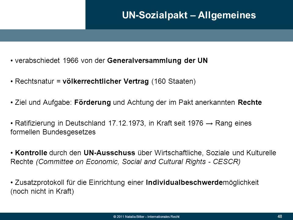 UN-Sozialpakt – Allgemeines