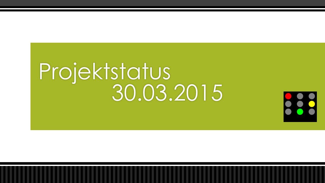 Projektstatus 30.03.2015